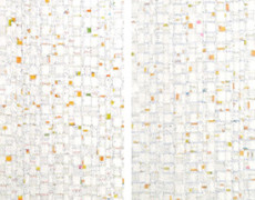 Jan R Carson, Bright Light/White Noise, 2013