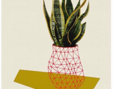 Hagar Vardimon, Big Plant, 2013